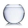 matériel : aquarium