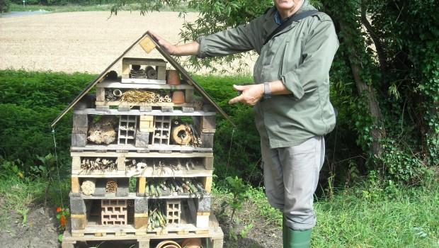 photos de la faune : ruche georges